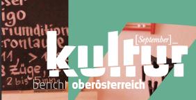 monatliche Kolumne // Freie Sicht